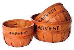 "One Kings Lane - Halloween Party - S/3 Splitwood ""Harvest"" Planters"