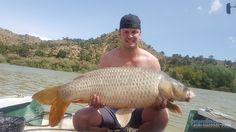 Karper vissen op de Ebro in Spanje - Catfish camp Caspe
