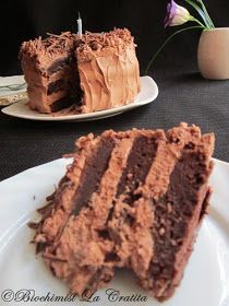Biochimist La Cratita: Tort de ciocolata (de post) - Vegan Chocolate Cake Vegan Chocolate, Chocolate Cake, Milk Cake, Vegan Cake, Coconut Milk, Gem, Desserts, Food, Chicolate Cake