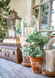 I used these potted, faux eucalyptus plants in my summer decorating, but they will transition beautifully to my fall decor. Modern Farmhouse Design, Farmhouse Style Decorating, Vintage Farmhouse, Fall Home Decor, Autumn Home, Elegant Homes, Romantic Homes, Fall Table, Rustic Elegance