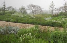 Oudolf ~ A 14 acre private garden, Nantucket Island, Massachusetts, USA _/\/\/\/\/\_