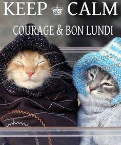 Bon Lundi Humour image 6