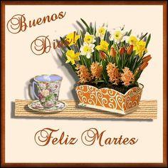 gracias a Dios por darnos un lindo y hermoso día de vida mas cuidate mucho te QRM no lo des sonríe...