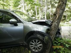Man takes 'selfie' while driving, crashes into tree