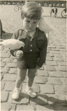i'm so sorry little boy Vintage photography sad boy in suit with two white doves Vintage Pictures, Old Pictures, Vintage Images, Old Photos, Black White Photos, Black And White Photography, Foto Transfer, Vintage Photographs, Beautiful Children