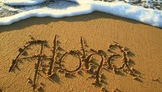 Image result for hawaii holidays hilton