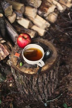 Autumn fall cup of tea in the woods - Image via honey & jam Coffee Time, Tea Time, Hot Coffee, Chocolate Cafe, Chocolate Cookies, Autumn Tea, Autumn Fall, Autumn Morning, Autumn Cozy