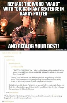 If you replaced 'wand' with 'dick' in Harry Potter