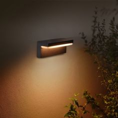 Philips Hue White and Color Ambiance LED-Wandleuchte Nyro schwarz Philips Hue, 5 W, Aluminium, Planer, Modern, Wall Lights, Lighting, Color, Home Decor