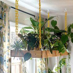 Charming Hanging Plants ideas to Brighten Your Patio – Gardening Decor Indoor Planters, Diy Planters, Plants Indoor, House Plants Decor, Plant Decor, Hanging Plant Hooks, Inside Plants, Garden Guide, Flower Lights