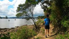 Hiking in the Bay of Islands, New Zealand