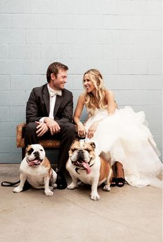Jacey Duprie of Damsel in Dior poses with her husband and two dogs in this adorable wedding photo