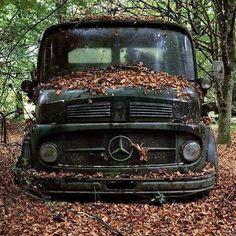 Woodfind??? #rodgerdodge #mercclub #mercedes  #mercedesbenz  #mercedesclub #mbusa #Benz #threepointedstar  #mercedesbenzclassic #classiccars  #luxurycars  #mbfanphoto #MercedesFans #car #supercar  #dreamcars #coupe #insidebenz  #countryliving #germancar #sportscars  #carsofinstagram #insidebenz #thebestornothing #cars #trucks #mercedestrucks