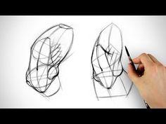 Robo Bean vs Anato Bean - Obliques Drawing Example | Proko