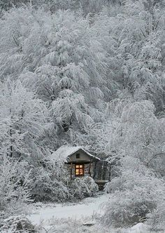 photography of a cabin in the snow. : Winter photography of a cabin in the snow.Winter photography of a cabin in the snow. : Winter photography of a cabin in the snow. Evening snowdrift aglow in Sundsandvik, Sweden