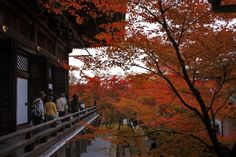 The main hall in Autumn..