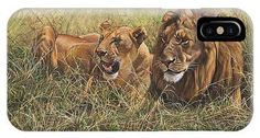 Male Lion and Lioness Resting in the Grass by Alan M Hunt British Wildlife, Wildlife Art, Animal Art Prints, Canvas Art Prints, Cat Paintings, Original Paintings, Rusty Spotted Cat, Black Footed Cat, Prey Animals