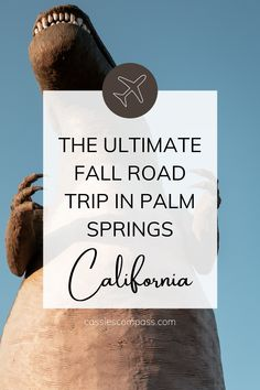 Everything you need to add to your Palm Springs road trip itinerary