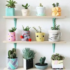 plant shelf goals, love the greenery and fun potting, great idea to have a plant wall space