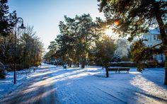 Winter auf Usedom - Ruhe und Geborgenheit auf allen Wegen