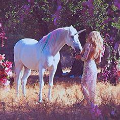 Paris Hilton Kissed A Unicorn, And She Liked It! Real Unicorn, Unicorn Horse, Unicorn Art, Unicorn Fantasy, Magical Creatures, Fantasy Creatures, Million Dollar Tan, Animals Beautiful, Cute Animals