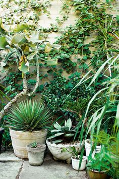 Now this is how to use pots in the garden! Pinned to Garden Design - Pots & Planters by Darin Bradbury.