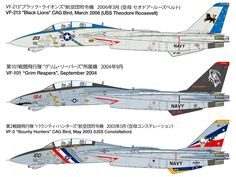 F14 Tomcat, American Air, Black Lion, Bounty Hunter, Grim Reaper, Military Aircraft, Constellations, Lions, Trek