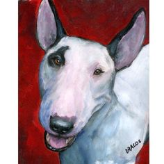 English Bull Terrier Dog Art 8x10 Print of by DottieDracos on Etsy, $12.00