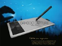 Bamboo Capture