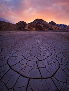 Spring storms leave dramatic fileds of mud cracks in Death Valley National Park…