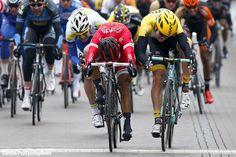 Bouhanni is a winner at closing race of the season In Belgium / Holland.  (Nationale Sluitingsprijs - Putte Kapellen)