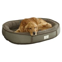 Wraparound Dog Bed With Memory Foam / Small Dogs 15-35 Lbs. (660 RON) ❤ liked on Polyvore featuring home, bed & bath, bedding, mattresses, animals and pets