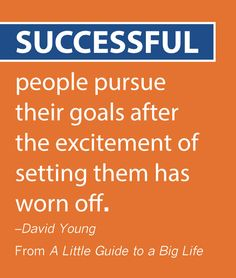 Successful people pursue their goals after the excitement of setting them has worn off. -David Young #ALittleGuide
