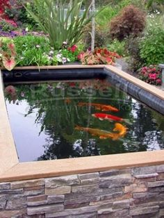 """What are Koi Ponds? Koi Ponds can be thought of as """"Swimming Pools for Koi."""" There are no rocks, gravel, or aquatic plants in a koi pond the could harm koi. Fish Ponds Backyard, Patio Pond, Outdoor Ponds, Diy Pond, Pond Landscaping, Backyard Water Feature, Koi Ponds, Garden Ponds, Fish Pool"""