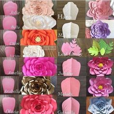 Modelos de flores gigantes de papel - Giant flower template and what the flower looks like Giant Paper Flowers, Diy Flowers, Fabric Flowers, Wedding Flowers, How To Make Paper Flowers, Happy Flowers, Flower Petals, Diy Paper, Paper Crafts