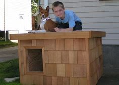 Eddy - Oregon:  several years of being tried and tested, this dog house has been proven to be the most comfortable and the safest home you can build for your beloved dog.