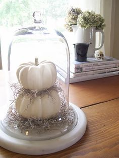 glass cloche with white pumpkins and spanish moss