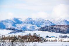 L'île de Hokkaido, au nord du Japon, attirera de plus en plus de touristes à compter de cette année grâce à une nouvelle ligne de TGV la reliant à Honshū.