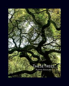 """My poems """"Tree Teachings"""" and """"Dogwood"""" are included in These Trees, a coffee table book by photographer Ruthie Rosauer. The book showcases more than 140 photographs of trees embellished with twenty five poems penned by twenty poets. http://www.ruthierosephotography.com/these-trees.html"""