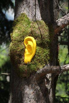 Land Art, Atelier, Naturaleza, Creativity