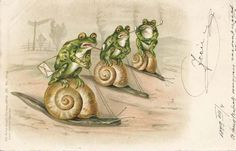 Pipe-smoking frogs riding snails. Vintage postcard, ca. 1899.