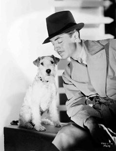 """A publicity still of William Powell and Asta the dog from """"The Thin Man."""" What a cutie! The dog, that is."""