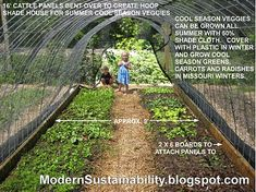 Cattle panel hoop house plans - for the new chicken yard, and a ...greenhouse??? :D