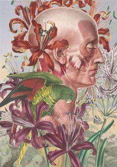Illustration by Juan Gatti.