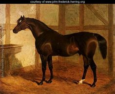 Partisan, A Dark Bay Racehorse In A Stable - John Frederick Herring Snr