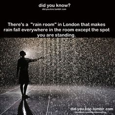 Control the weather in the Rain Room at the Curve, Barbican Centre, London Places to travel 2019 If this is true, it is now on my bucket list. Hotel Lanzarote, Cool Places To Visit, Places To Travel, Travel Stuff, The Meta Picture, The Last Summer, Just Dream, Before I Die, I Want To Travel