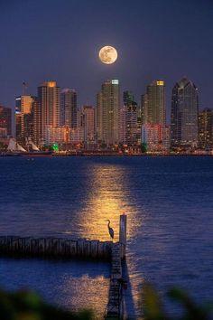 la bahia de San Diego a la luz de la luna