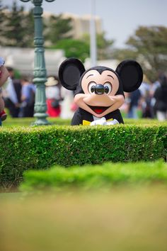 Mickey And Minnie Love, Mickey Mouse And Friends, Disney Mickey Mouse, Disney Parks, Walt Disney World, Disney Pixar, Disney Characters, Minnie Mouse Pictures, Pics For Dp