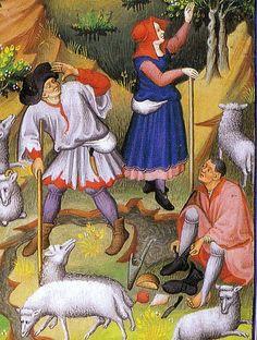 1430shepherds