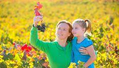 Family-Friendly Wineries in Virginia   Washingtonian Bride & Groom